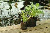 5 stuks Vijverplantzakje rond 15 cm