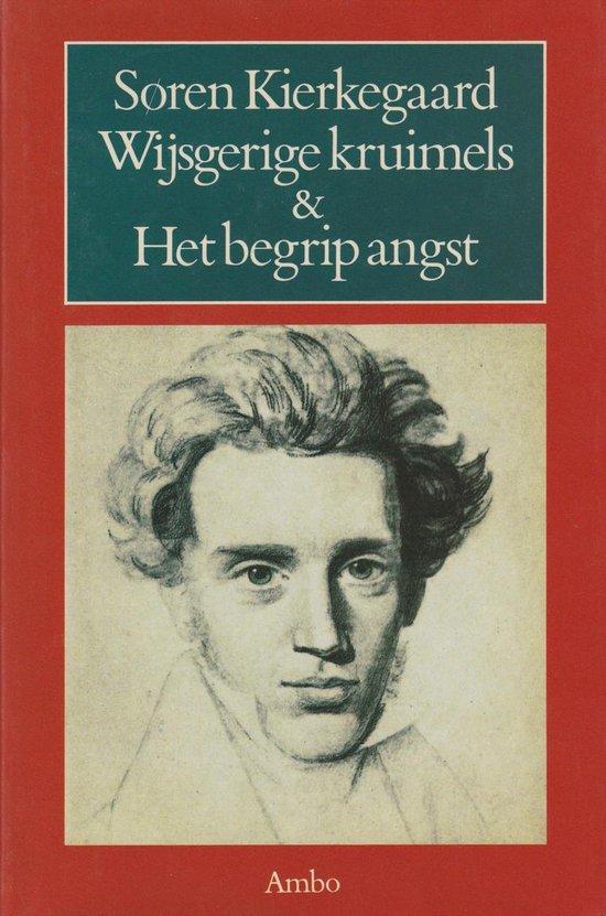 Wijsgerige kruimels, of Een kruimeltje filosofie - Soren Kierkegaard |