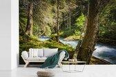 Rivierbedding in de bossen van het Nationaal park Hohe Tauern fotobehang vinyl breedte 420 cm x hoogte 280 cm - Foto print op behang (in 7 formaten beschikbaar)