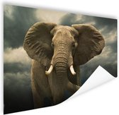 Afrikaanse olifant donkere wolken Poster 60x40 cm - Foto print op Poster (wanddecoratie)