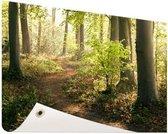 Pad in het bos  Tuinposter 200x100 cm - Tuindoek / Buitencanvas / Schilderijen voor buiten (tuin decoratie) XXL / Groot formaat!