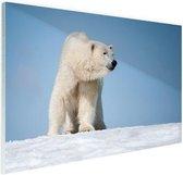 Ijsbeer Glas 180x120 cm - Foto print op Glas (Plexiglas wanddecoratie) XXL / Groot formaat!