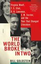 Boek cover The World Broke in Two van Bill Goldstein