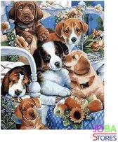 Schilderen op nummer Puppies 40x50cm
