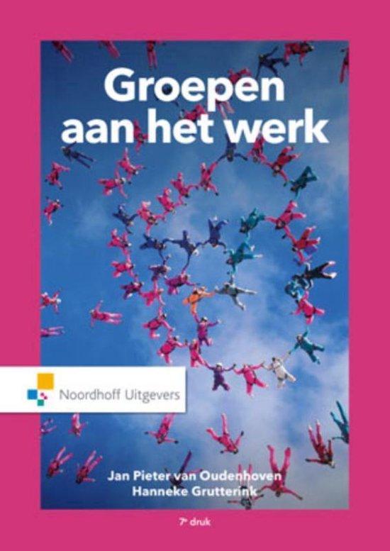 Groepen aan het werk - Jan Pieter van Oudenhoven  