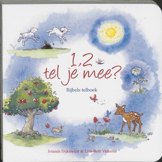 Cover van het boek '1,2 tel je mee ?' van J. Dijkemeijer