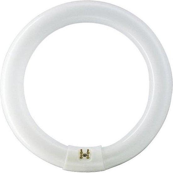Osram Lumilux Cirkel voor Lamp - Warm - 22W