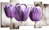 Canvas schilderij Tulpen | Paars, Grijs, Wit | 120x65 5Luik