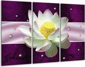 Canvas schilderij Tuin | Paars, Wit | 120x80cm 3Luik