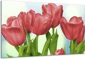 Glasschilderij Tulpen | Rood, Groen, Blauw | 120x70cm 1Luik | Foto print op Glas |  F003207