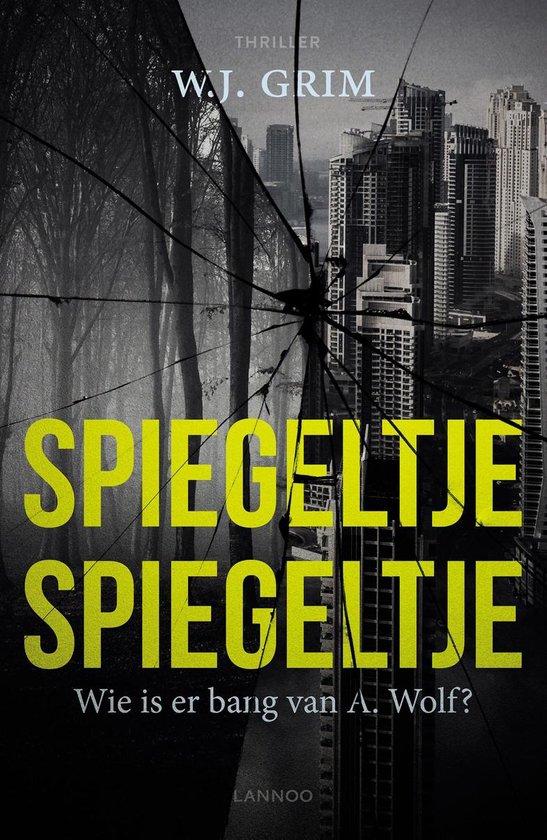 Boek cover Spiegeltje, Spiegeltje van W.J. Grim (Paperback)