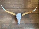 Longhoorn gegraveerd 1 meter breed