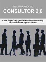 Consultor 2.0