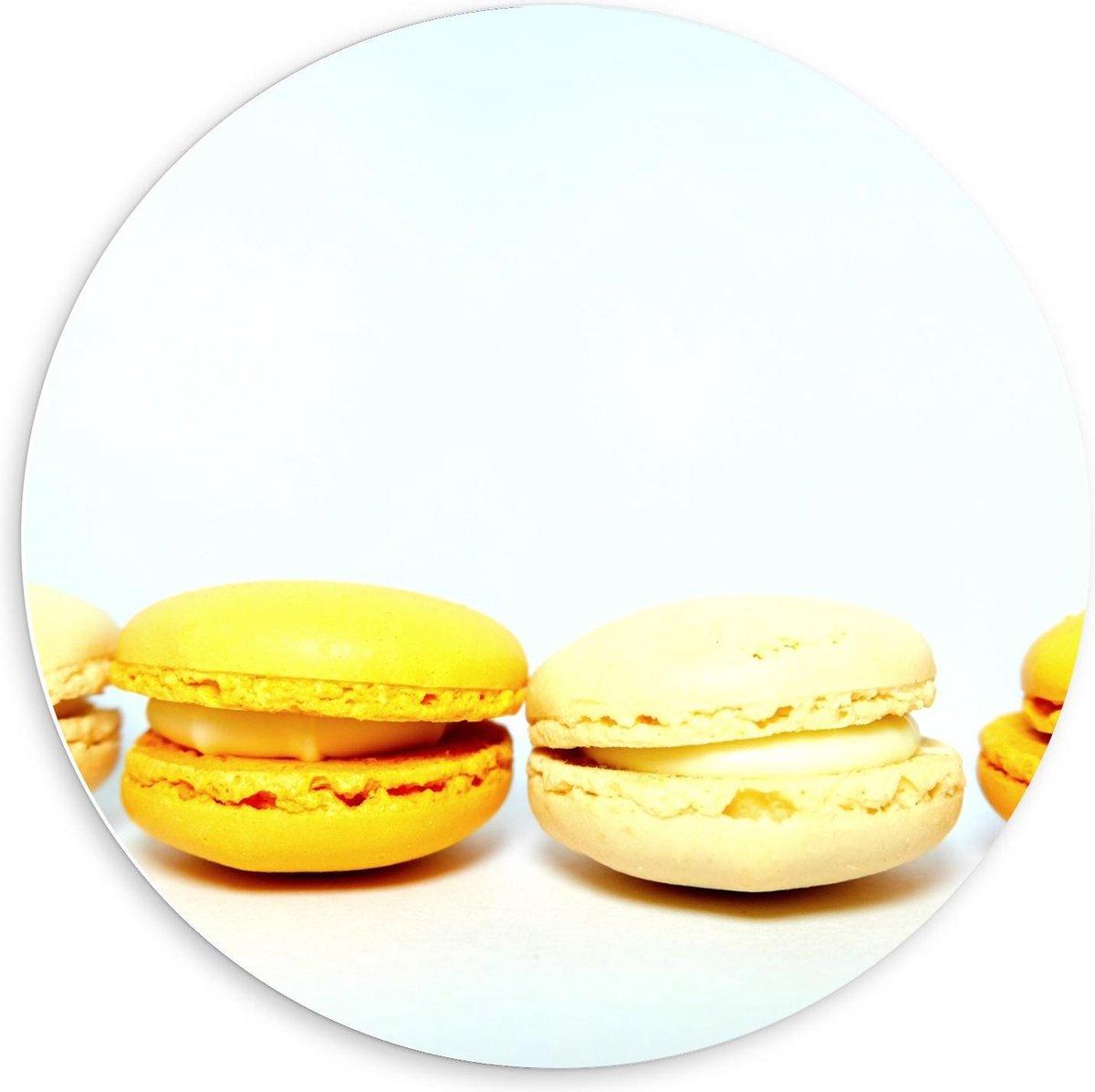Forex Wandcirkel - Rij Gele Macarons - 60x60cm Foto op Wandcirkel (met ophangsysteem)