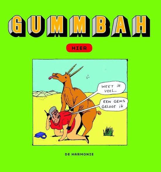 Boek cover Hier van Gummbah (Hardcover)
