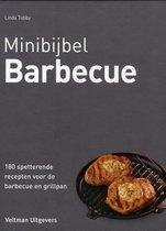 Minibijbel  -   Barbecue