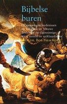 Boek cover Vantoen.nu  -   Bijbelse buren van B. Smalhout