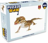 Puzzel 1000 stukjes volwassenen Gecko op witte achtergrond 1000 stukjes - poserende gekko  - PuzzleWow heeft +100000 puzzels