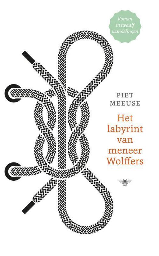 Het labyrint van meneer Wolffers - Piet Meeuse  