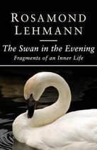 The Swan in the Evening