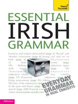Essential Irish Grammar: Teach Yourself