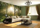 Fotobehang - Forest - 232 x 315 cm hxb - Groen