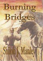 Omslag Burning Bridges