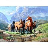 Diamond painting - paarden - 30 x 40 cm