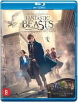 Afbeelding van Fantastic Beasts and Where to Find Them (Blu-ray)