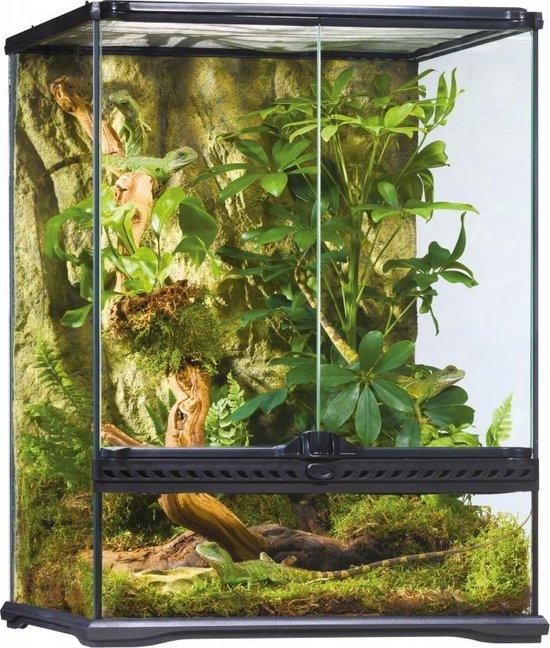 Exo Terra paludarium 45x45x60cm