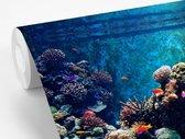 Behang - Fotobehang - Aquarium met tropische vissen en koralen - Breedte 330 cm x hoogte 220 cm