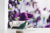 Fotobehang vinyl - Seringenbloemen in de natuur breedte 450 cm x hoogte 300 cm - Foto print op behang (in 7 formaten beschikbaar) - slaapkamer/woonkamer/kantoor