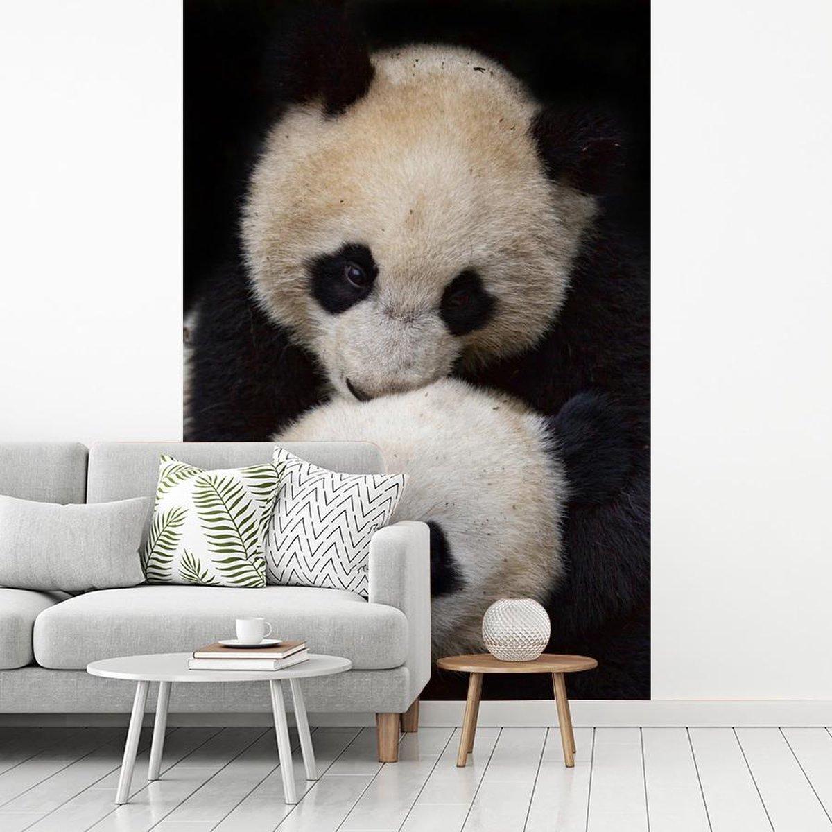 Behang - Fotobehang - Twee panda's zijn beste vrienden - Breedte 180 cm x hoogte 280 cm