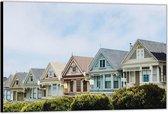 Dibond –Painted Ladies - San Francisco -60x40 Foto op Aluminium (Wanddecoratie van metaal)