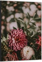Dibond –Bloemen Close-up– 40x60cm Foto op Aluminium (Met Ophangsysteem)