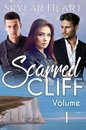 Scarred Cliff Volume 1