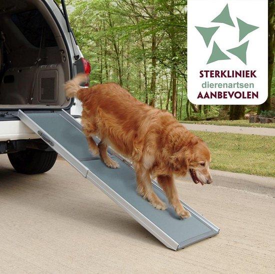 Hondenloopplank - Petramp - XL 120 - 220 cm