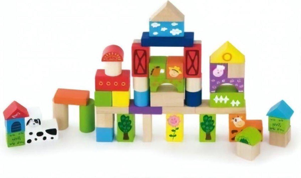 Viga Toys Houten Blokken - Boerderij - 50 Kleurrijke Blokken