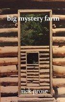 Big Mystery Farm