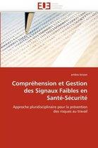 Compr�hension Et Gestion Des Signaux Faibles En Sant�-S�curit�