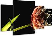 Canvas schilderij Tulp | Zwart, Groen, Rood | 160x90cm 4Luik