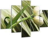 Glasschilderij Tulp | Grijs, Wit, Groen | 100x70cm 5Luik | Foto print op Glas |  F004704