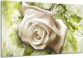 Glasschilderij Roos | Wit, Groen | 120x70cm 1Luik | Foto print op Glas |  F003333