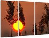 Canvas schilderij Zonsondergang   Geel, Bruin, Oranje   120x80cm 3Luik