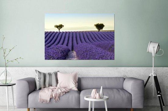 Rollende heuvels met een lavendelveld Aluminium 180x120 cm - Foto print op Aluminium (metaal wanddecoratie) XXL / Groot formaat!