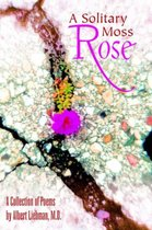 A Solitary Moss Rose
