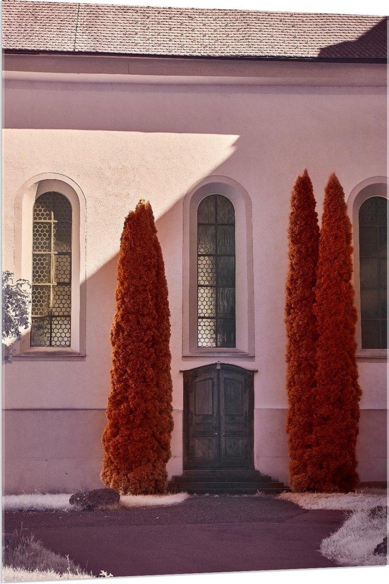 Plexiglas - Ingang met Hoge Bomen - 80x120cm Foto op Plexiglas (Met Ophangsysteem)