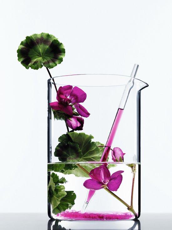 L'Oréal Paris Botanicals Geranium Radiance Remedy Conditioner - 200 ml