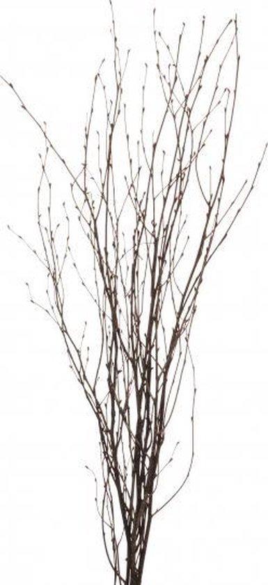 2x Bosjes bruine paastakken 115 cm berkentakken/kunsttakken - Paasdecoratie / Paasversiering