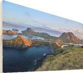 Nationaal park Komodo op hout - 90x60 - Het nationaal park Komodo met de komodovaraan Vurenhout met planken - foto/schilderij op hout